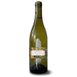 Chiusa Grande – Abruzzo Organic Montepulciano